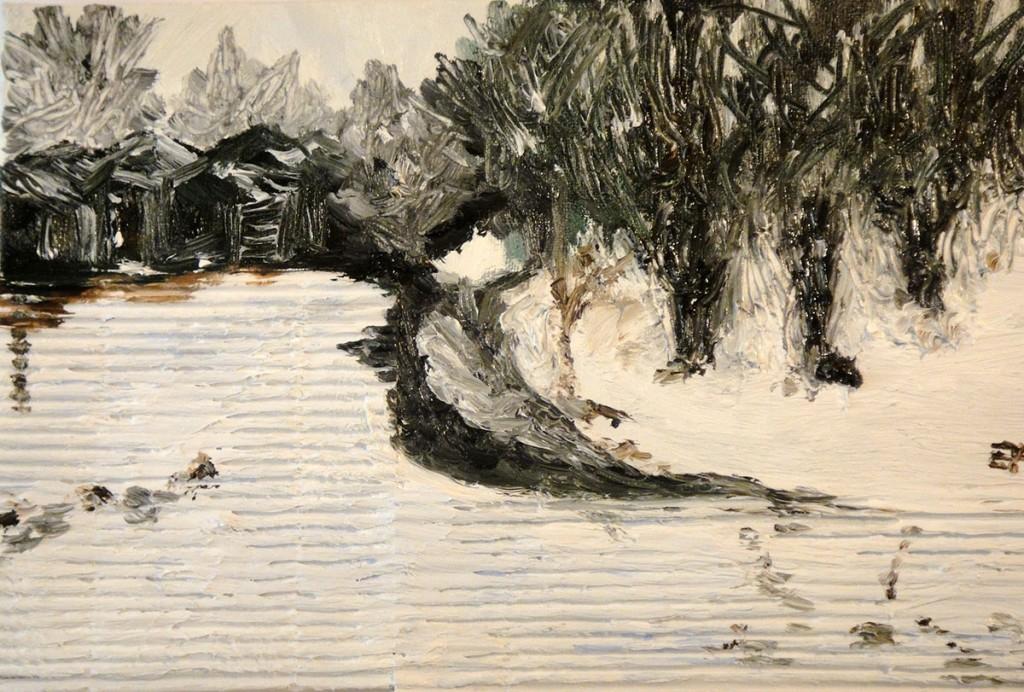 Neve fra i capanni - Olio su tela 33x22cm - Natale 2011